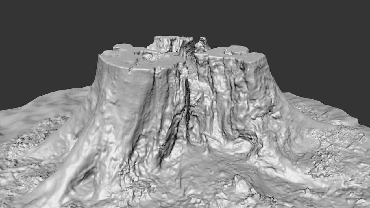 TALOS 3D Scan Store Tree Stump Sculpt