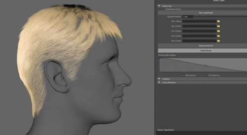 3D Hair Asset for Animation Download